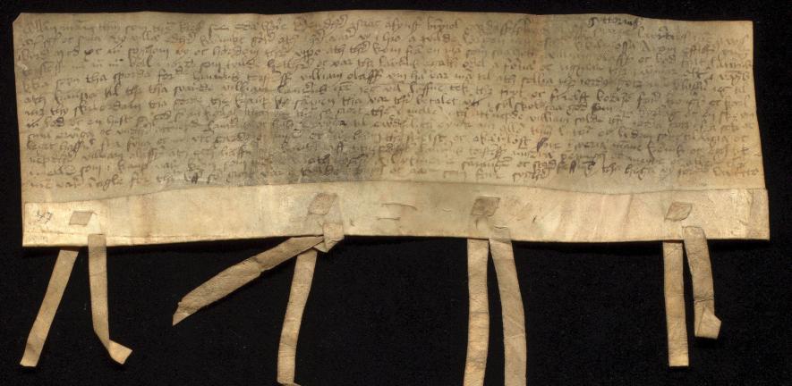 Photo of medieval Norwegian charter from the corpus Tamsin works on: image credit Ola Søndenå of Universitetsbiblioteket i Bergen