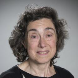 Dr Teresa  Parodi